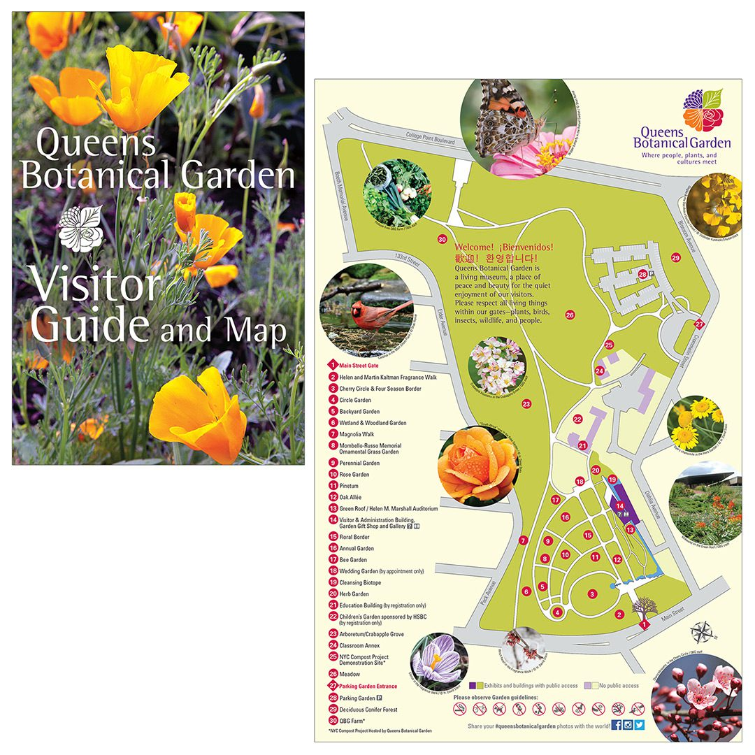map & visitor guide / queens botanical garden | anne garland design Queens College Map on