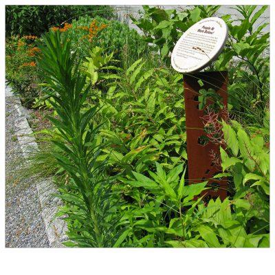 queens botanical garden signage